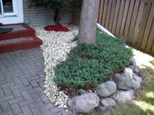 landscaping projects - garden new.jpg